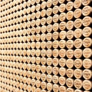 VIVA Sustainable Wine project (Italia)