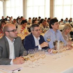 IV Jornada Diam (Spagna) : Donne & Vino